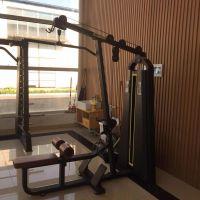 奥圣嘉ASJ-S869健身房减肥高低拉一体机
