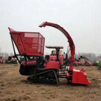 专用改装拖拉机带玉米秸秆青储机 自走式履带式秸秆青储收割机