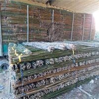 产地直销山东2.5米、3米竹竿、菜架杆(图)
