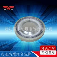 厂家热销供应荧光灯 BYH系列 增安型全塑环形荧光灯 防爆荧光灯