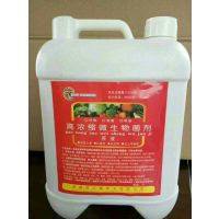山东唐亿鑫肥业供应高浓缩微生物菌剂原液 减少死棵,防止根黄,适用瓜果蔬菜