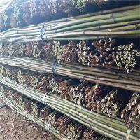 供应2.5米-3米江西菜架竹竿