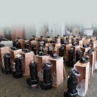 市政污水处理 农村排灌 污水泵 推荐现货