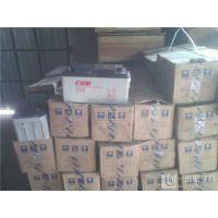 CGB蓄电池CB12900代理商供货