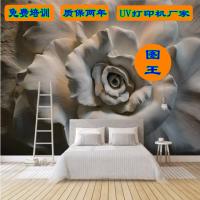 电视背景墙水晶壁画广州图王UV打印机厂家 油画装饰画UV打印机
