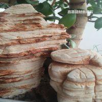 现货供应龟纹石 千层石 微景观用天然造景石