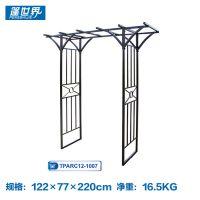定做铁艺家具自建院子欧式围墙铁艺大门TPARC12-1007