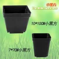 大小黑方多肉塑料花盆植物盆小方花盆搭配育苗盘(500个起包邮)
