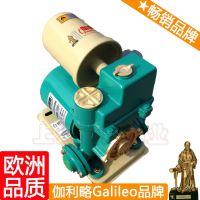 家用自动加压泵 cyz自吸泵 全自动冷热自吸泵 卓越
