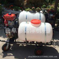 手推式汽油高压打药机 多功能二冲四冲汽油背负式施肥器喷雾机