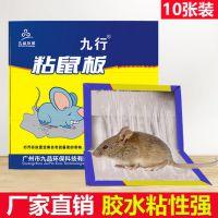 九行粘鼠板捕鼠粘灭鼠老鼠贴 广州九品环保病媒防制公司直销