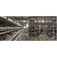层叠式蛋鸡饲养成套设备 自动化养鸡设备 厂家直销