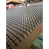 厂家供应车库排水板 聚乙烯滤水板 隧道防水板 产品质量好 价格优 欢迎考察