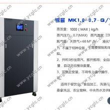 直流低氮模块炉-传统天然气锅炉替代者就选银晨锅炉