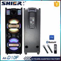 SHIER双十寸移动广场舞拉杆蓝牙音响送2支无线麦克风 USB 遥控功