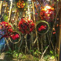 可定做枝干白桦树白桦木树装饰树枝木棍艺术枝干1米1.5米2米3米