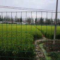 养殖牛羊铁丝网围栏规格/价格 圈地围栏网 厂家 养鸡网