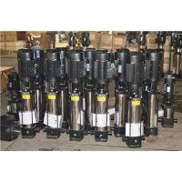 QDLF型不锈钢耐腐蚀立式多级管道离心泵 高楼生活供水增压泵