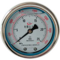 耐震压力表防护等级_耐震压力表生产标准