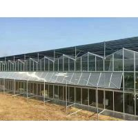 国外温室材料展会,出口阳光板温室农业大棚的设计构造