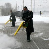供应蔬菜大棚吹雪机 背负式小型吹风机 公路吹尘机