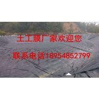 http://himg.china.cn/1/5_558_1044197_800_451.jpg