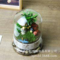 喆轩微景观植物生态瓶 DIY瓶子微景观玻璃罩 多肉景观仿真花容器