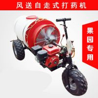 佳诚牌三轮车自走式喷雾机 园林树木除虫打药机 果园农田风送式打药机