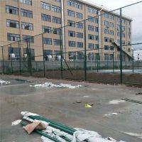 体育场围栏 镀锌边坡防护网 草绿色包塑勾花网