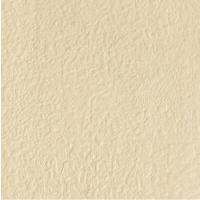 PINLI陶瓷ZSC06003A 600*600mm微粉抛光砖斑点通体砖地砖厂家