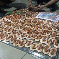智烘海虾烘干设备干燥各种海产品不费事