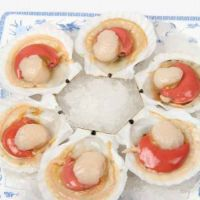 辽宁冻煮带卵虾夷扇贝厂家