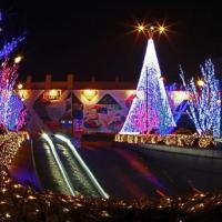 东胜灯光节策划灯光节活动大型灯光展览方案