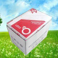 a4纸生产厂家直销 静电复印纸8包装 Q2质优价廉 500张一包