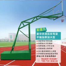 电动液压篮球架价格-电动液压篮球架-强森健身器材招标(查看)