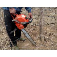 园林树木起苗机 城市绿化树木起树机 合金链条式起树机