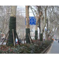绿化保湿缠树带直销价格
