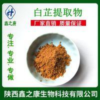 白芷提取物10:1 天然植物  水溶性 厂家现货直销 白芷粉 1kg包邮