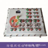 专业生产防爆配电盘室外防爆配电盘照明防爆配电盘