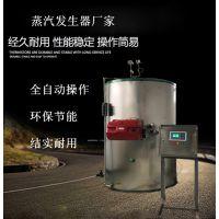 亮普小型全自动取暖锅炉 任意水温