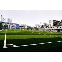 石家庄体育馆人造草坪足球场铺装