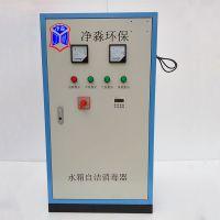 外置式水箱自洁消毒器臭氧发生器800w 含气泵 定州净淼厂家包邮