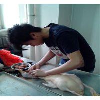广式烧鸭技术培训,深圳脆皮烧鸭培训学校