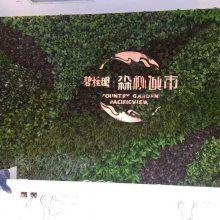 仿真植物墙假植物墙体装饰人造常春绿植花卉垂直美化