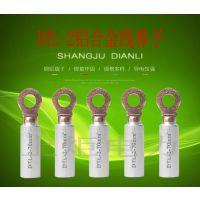 铝合金接线鼻子,DTL-2-50线鼻子,厂家现货供应