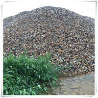 批发天然鹅卵石 河卵石 湿地 滤料 建筑材料