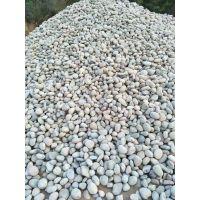 变压器鹅卵石 临沂雨花石 5-8公分