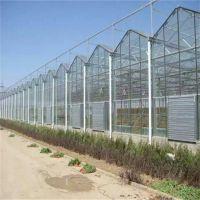 陕西咸阳智能温室大棚 厂家安装设计生产