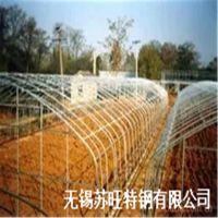 蔬菜大棚热镀锌钢管/花卉大棚管/大棚配件/温室大棚钢管 32*2*12