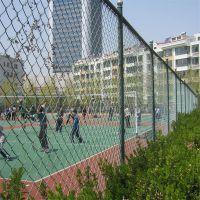 龙骠球场护栏网 学校建设围栏网 幼儿园外围围栏